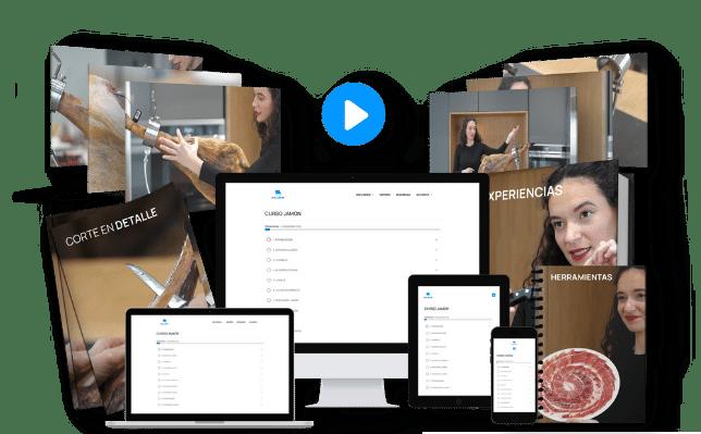 academia online highlers